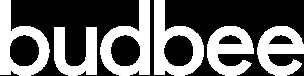 Budbee frakt med padelracket